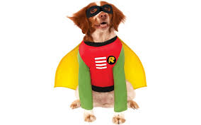 coca cola halloween costume 13 adorable halloween costumes for your dog
