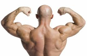 Muscle Man Meme - create meme muscle man the muscles of the back muscle groups
