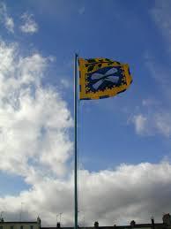 Hatis Flag What Is Vexillology Vexillology Ireland Brateolaíocht éireann