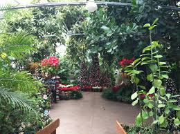 Botanical Gardens In Illinois Poinsettia Show At Luthy Botanical Garden Conservatory In Peoria