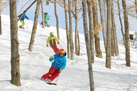wonderful winter activities in michigan for all ages michigan
