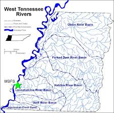 Tennessee rivers images West tennessee rivers meeman university of memphis jpg