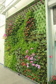 tropical living wall design