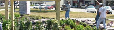 florida friendly landscaping archives uf ifas extension sarasota