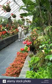 New Zealand Botanical Gardens Dh Botanic Gardens Wellington New Zealand Looking At Plants