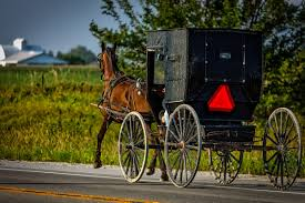 Iowa travel and transport images Free images farm transport amish carriage jpg!d