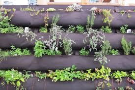 Diy Vertical Herb Garden Vertical Herb Garden U2022 Nifty Homestead