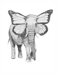 drawn elephant detailed pencil and in color drawn elephant detailed