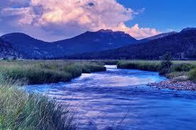 denver property management cobalt creek property management