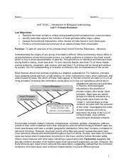 ant 3514c intro biolog anthro uf page 1 course hero