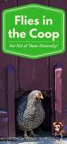 How To Raise Backyard Chickens For Eggs 333 Best Raising Backyard Chickens Images On Pinterest Backyard