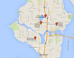 seattle map greenwood sva on the go veterinarian in seattle wa usa contact us