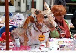 The Queens Corgis Corgi Dog Queen Stock Photos U0026 Corgi Dog Queen Stock Images Alamy