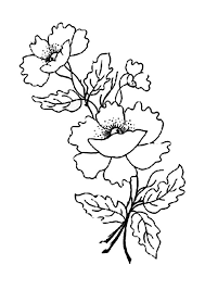 remembrance day coloring pages coloring home