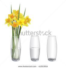 Flowers Glass Vase Glass Vase Stock Images Royalty Free Images U0026 Vectors Shutterstock