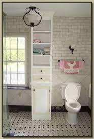 Built In Bathroom Cabinets 22 Built In Bathroom Storage Cabinets Eyagci