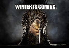 Bill Murray Groundhog Day Meme - weekly ramblings of the yellow man curran s corner