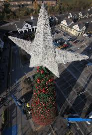 britain u0027s largest christmas tree goes up in cheshire daily mail