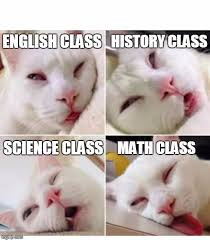 Memes About English Class - bored cat imgflip