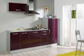 meuble cuisine aubergine incroyable micro onde encastrable meuble haut 19 meuble cuisine