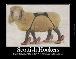 Scottish Memes - scottish hookers are baa a a ad the best funny pictures