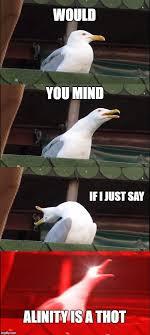 That D Be Great Meme Generator - inhaling seagull meme imgflip