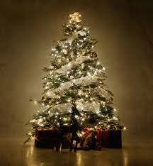Simple Christmas Tree Decorating Ideas Awesome Ideas Green Christmas Tree Decorations Simple Blue Home