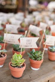 best 25 succulent wedding favors ideas on succulent