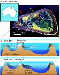 Great Barrier Reef Map Ocean Acidification 3 Great Barrier Reef On The Ocean