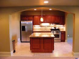 Orange Kitchens Ideas by Basement Kitchens Designs Ideas