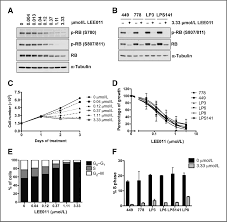 antiproliferative effects of cdk4 6 inhibition in cdk4 amplified