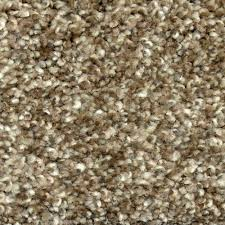 home decorators collection palace ii color foster texture 12 ft