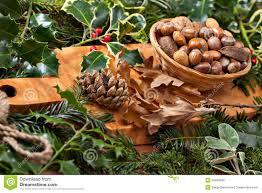 christmas nuts christmas nuts royalty free stock image image 35904336