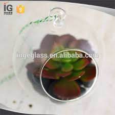 globe shaped glass terrariums clear glass hanging terrarium glass