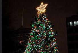 why scotia sends boston a tree every year mental