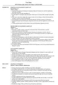 sle resume templates accountant trailers plus lodi management assistant resume sles velvet jobs