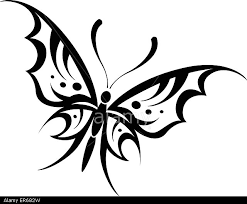 vector illustration of butterfly tribal drawing on white