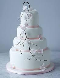 hochzeitstorte cupcakes 502 besten pink cakes bilder auf