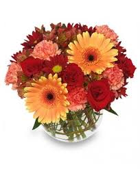 blooms flowers hot spicy vase of flowers in tuscaloosa al blooms florist