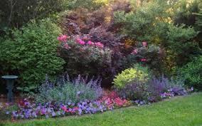 ornamental gardens archives backyard garden lover