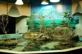 luxury aquarium decorating aquarium design pinterest