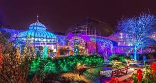 phipps conservatory christmas lights phipps conservatory winter flower show and light garden 2017 in