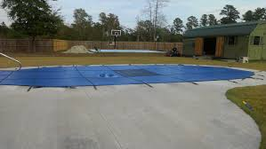 small backyard basketball court dimensions photo of dog jumping