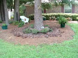 Backyard Trees Landscaping Ideas Fabulous Tree Landscaping Ideas Garden Ideas And Designs