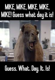 Hump Day Camel Meme - mike mike mike mike mike guess what day it is guess what
