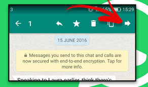 forward text messages android whatsapp how to forward a text picture or file to
