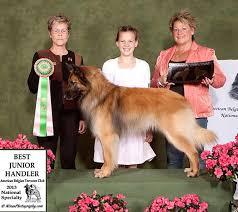 belgian sheepdog club of america national specialty past specialties abtc