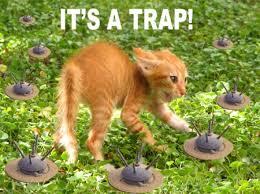 It S A Trap Meme - it s a trap cat meme cat planet cat planet