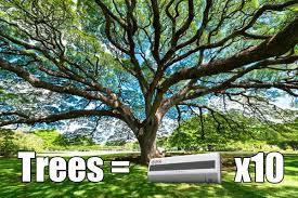 few amazing facts about trees sanjay bokadia pulse linkedin
