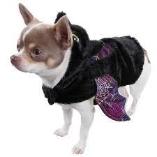Spider Dog Halloween Costume Dogs Halloween Costume Small Bat Fancy Dress U0026m